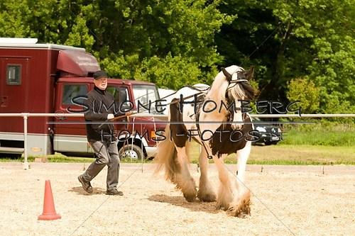 (c)SimoneHomberg_Ponyfest_2013_0100
