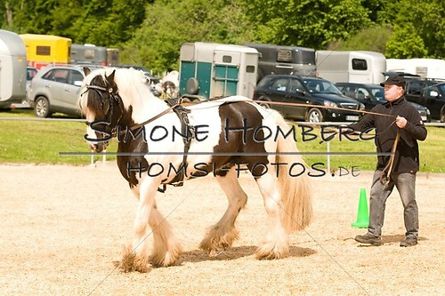 (c)SimoneHomberg_Ponyfest_2013_0101