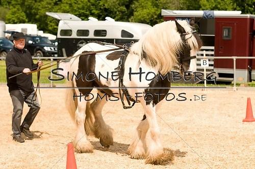 (c)SimoneHomberg_Ponyfest_2013_0102