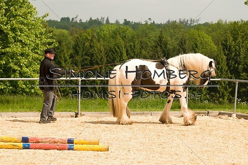 (c)SimoneHomberg_Ponyfest_2013_0104