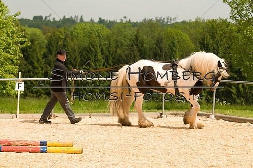 (c)SimoneHomberg_Ponyfest_2013_0105