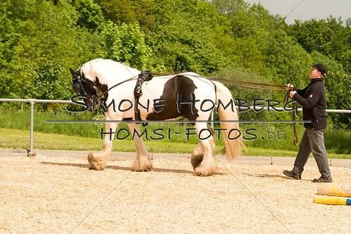 (c)SimoneHomberg_Ponyfest_2013_0108
