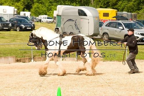 (c)SimoneHomberg_Ponyfest_2013_0109