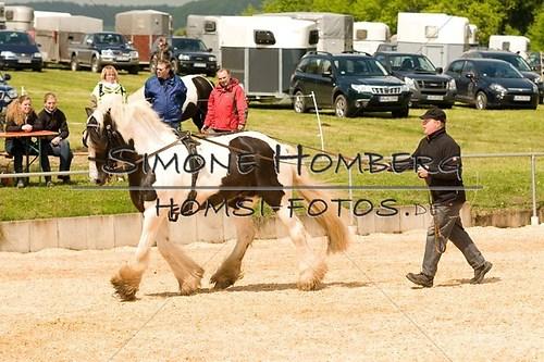 (c)SimoneHomberg_Ponyfest_2013_0110