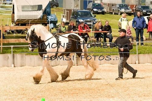 (c)SimoneHomberg_Ponyfest_2013_0111