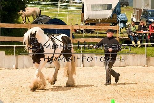 (c)SimoneHomberg_Ponyfest_2013_0112