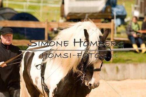(c)SimoneHomberg_Ponyfest_2013_0114