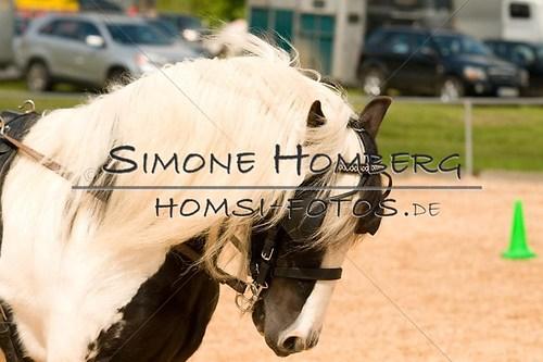 (c)SimoneHomberg_Ponyfest_2013_0115