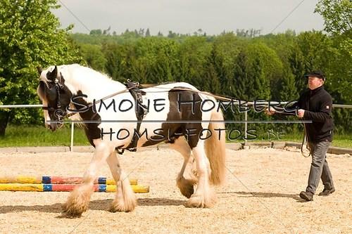 (c)SimoneHomberg_Ponyfest_2013_0117