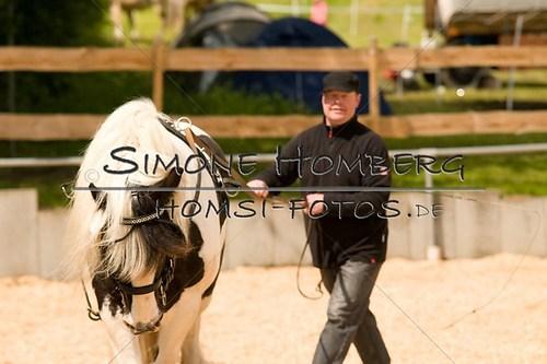 (c)SimoneHomberg_Ponyfest_2013_0118
