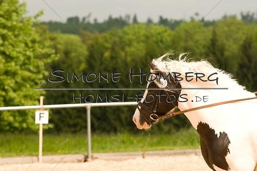 (c)SimoneHomberg_Ponyfest_2013_0120