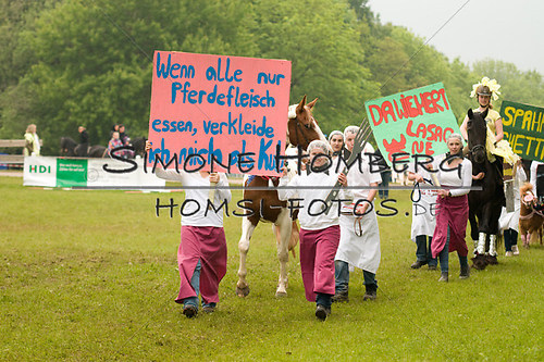 (c)SimoneHomberg_Ponyfest_2013_0649