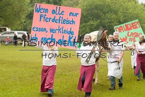 (c)SimoneHomberg_Ponyfest_2013_0650