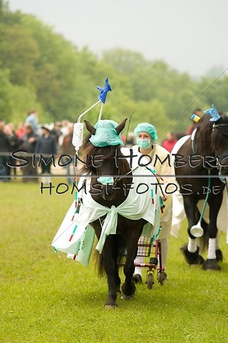 (c)SimoneHomberg_Ponyfest_2013_0665