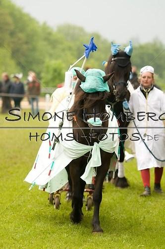(c)SimoneHomberg_Ponyfest_2013_0666