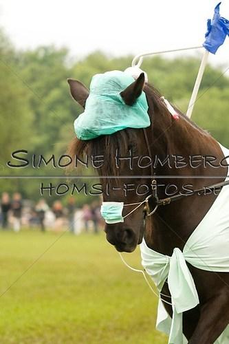 (c)SimoneHomberg_Ponyfest_2013_0667