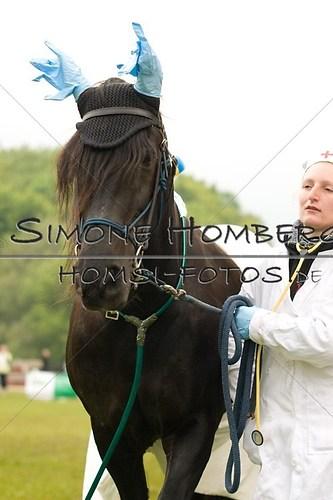 (c)SimoneHomberg_Ponyfest_2013_0669