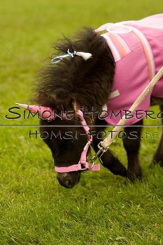 (c)SimoneHomberg_Ponyfest_2013_0677