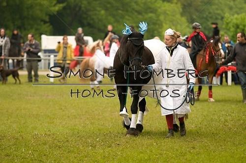 (c)SimoneHomberg_Ponyfest_2013_0686
