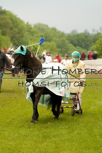 (c)SimoneHomberg_Ponyfest_2013_0688