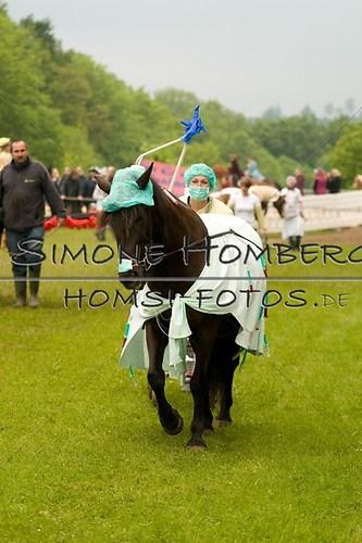 (c)SimoneHomberg_Ponyfest_2013_0689