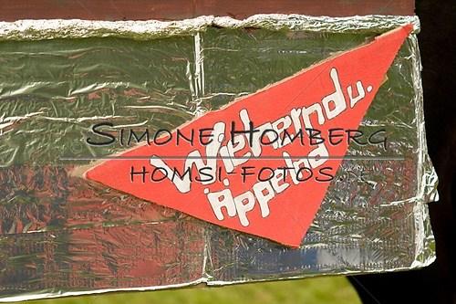 (c)SimoneHomberg_Ponyfest_2013_0691