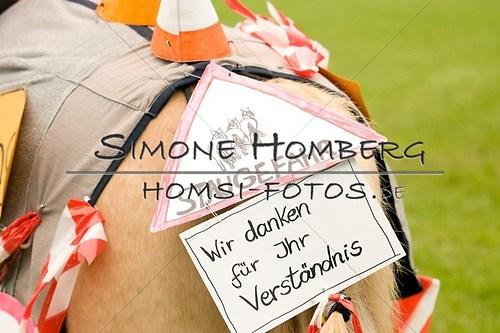 (c)SimoneHomberg_Ponyfest_2013_0693