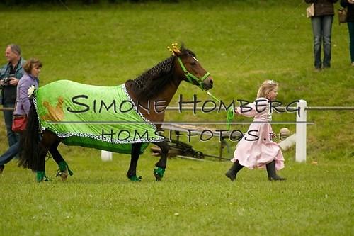 (c)SimoneHomberg_Ponyfest_2013_0701