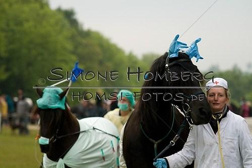 (c)SimoneHomberg_Ponyfest_2013_0707