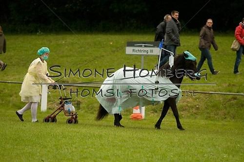(c)SimoneHomberg_Ponyfest_2013_0708