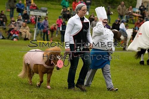 (c)SimoneHomberg_Ponyfest_2013_0716