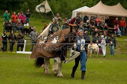 (c)SimoneHomberg_Ponyfest_2013_0718