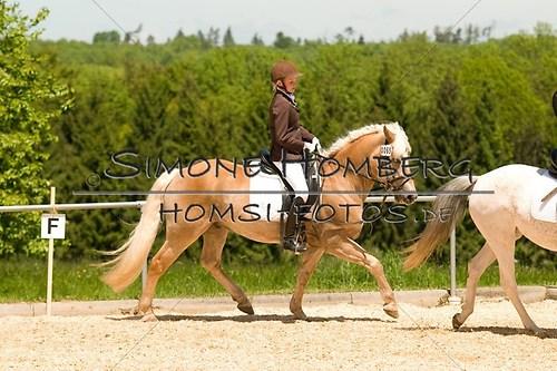 (c)SimoneHomberg_Ponyfest_2013_So_0230