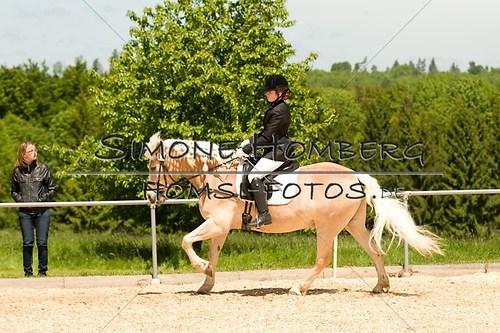 (c)SimoneHomberg_Ponyfest_2013_So_0236