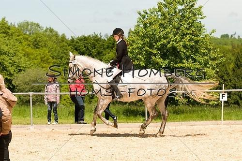 (c)SimoneHomberg_Ponyfest_2013_So_0238