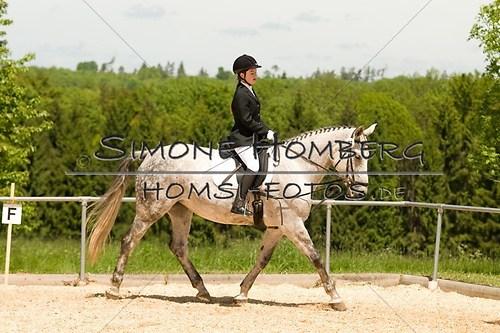(c)SimoneHomberg_Ponyfest_2013_So_0253
