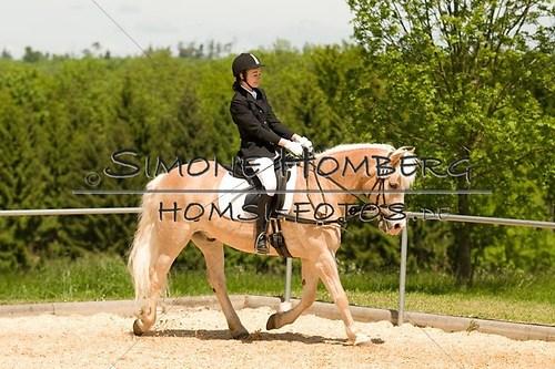 (c)SimoneHomberg_Ponyfest_2013_So_0265