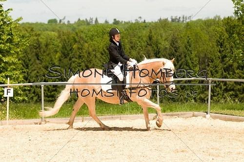 (c)SimoneHomberg_Ponyfest_2013_So_0274