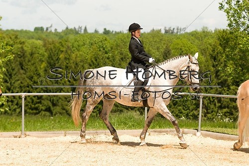 (c)SimoneHomberg_Ponyfest_2013_So_0285