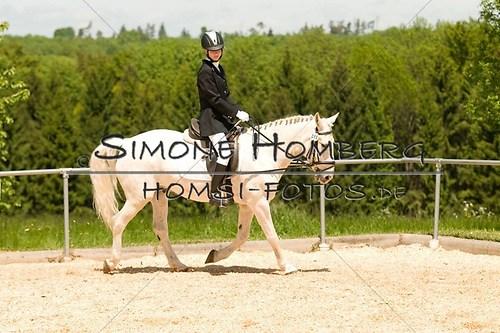 (c)SimoneHomberg_Ponyfest_2013_So_0289