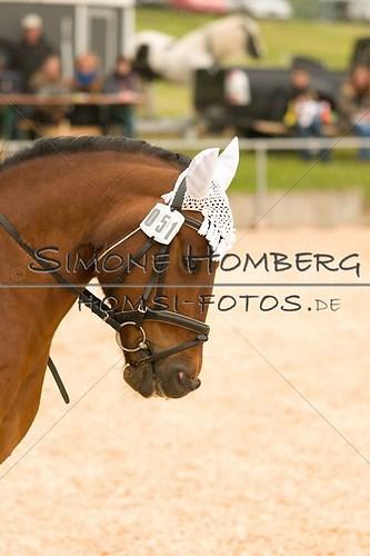 (c)SimoneHomberg_Ponyfest_2013_0225
