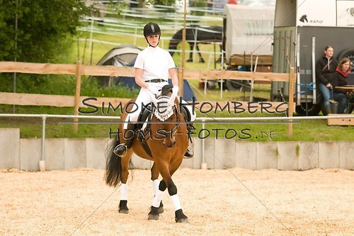 (c)SimoneHomberg_Ponyfest_2013_0241