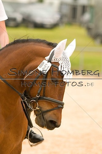 (c)SimoneHomberg_Ponyfest_2013_0242