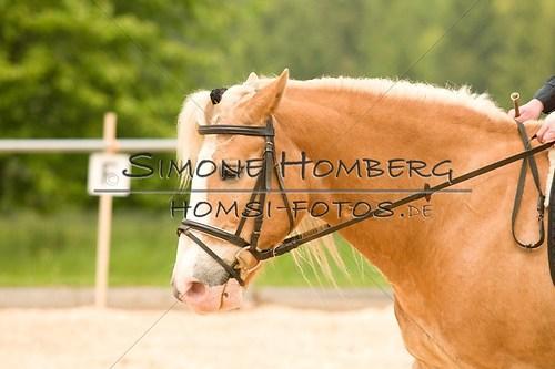 (c)SimoneHomberg_Ponyfest_2013_0279