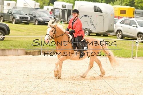 (c)SimoneHomberg_Ponyfest_2013_0289