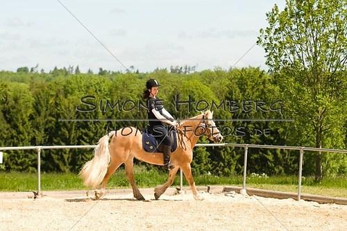 (c)SimoneHomberg_Ponyfest_2013_So_0139
