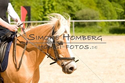 (c)SimoneHomberg_Ponyfest_2013_So_0144