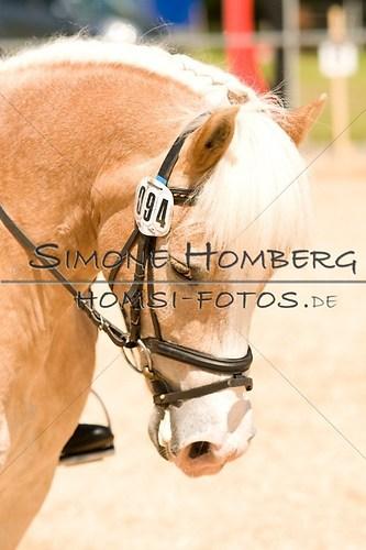 (c)SimoneHomberg_Ponyfest_2013_So_0165