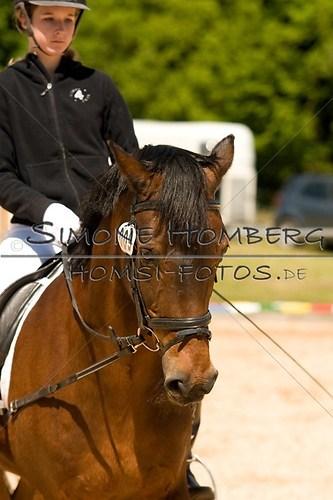 (c)SimoneHomberg_Ponyfest_2013_So_0166