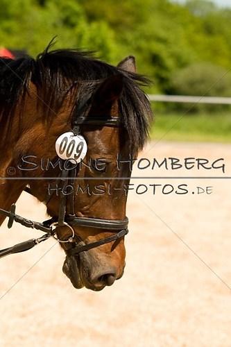 (c)SimoneHomberg_Ponyfest_2013_So_0167